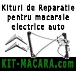 Kituri de reparatie si piese pentru macarale si geamuri electrice auto - Citroen