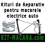 Kituri de reparatie si piese pentru macarale si geamuri electrice auto - Seat