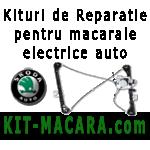 Kituri de reparatie si piese pentru macarale si geamuri electrice auto - Skoda